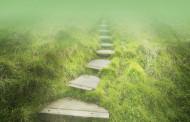 അനുഗമനത്തിന്റെ പടവുകള് (Steps to Follow)