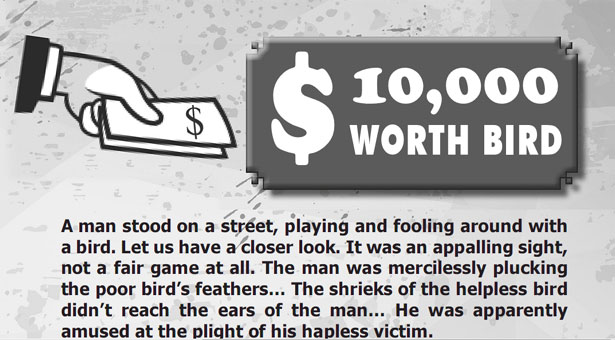 Worthless Bird